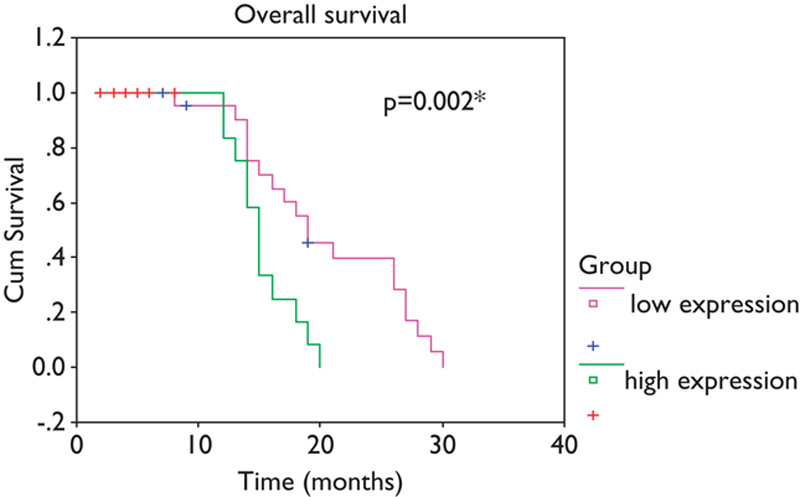Figure 7: Kaplan–Meier survival curve for chronic lymphocytic leukemia patients according to <i>CLLU1</i> expression levels. <i>CLLU1</i>, chronic lymphocytic leukemia-upregulated gene 1.